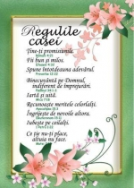 P36-Regulile-casei