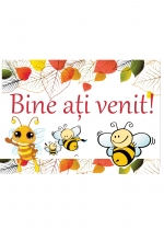 bine-ati-venit-albinute-site